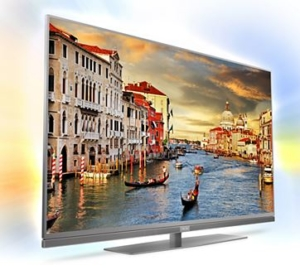 "55"" Professional LED TV"